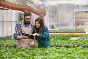 Garden Worker Using Digital Tablet