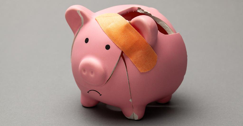 Tirelire petit cochon rose cassée brisée programme de protection